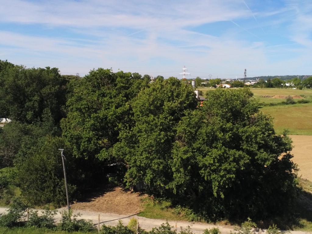 Vente Terrain Portet sur Garonne